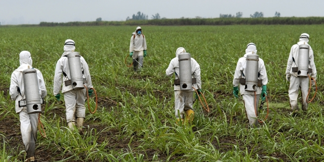 spraying2-monsanto-roundup-ge-agriculture-gmo